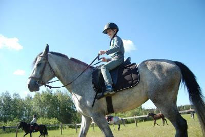 "Конный лагерь ""Horse Paradise"""