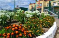 Песчано-Ковалинский детский сад