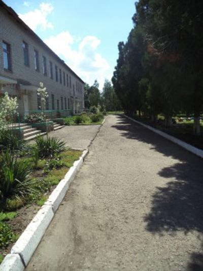 """Детский сад № 5 """"Ромашка"""""""