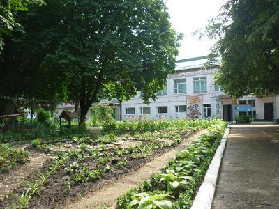 Детский сад № 24