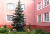 Ясли-сад № 531
