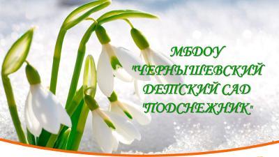 """Чернышевский детский сад """"Подснежник"""""""