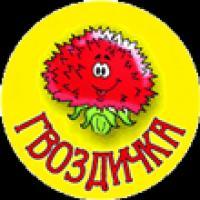 """Детский сад № 9 """"Гвоздичка"""""""