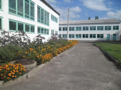 Салтынская школа