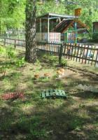 Детский сад № 38